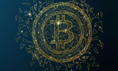 The Types Of Cryptocurrency Fanatics And Who Is On Top Of The Crypto Chain